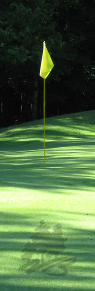 Photo of the flag on the putting green